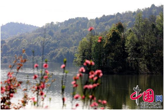 春到铜梁玄天湖 繁花盛开景色如画